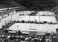 1979体操ワールドカップ